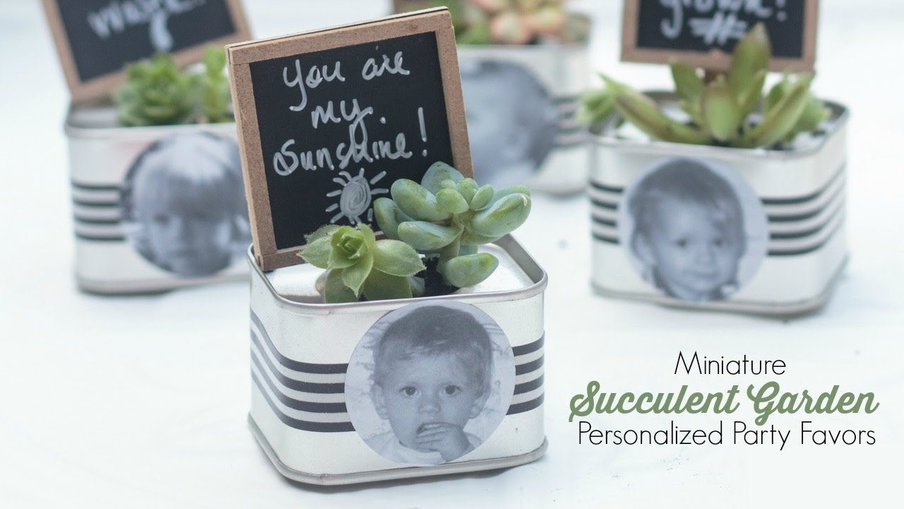personalized mini succulent garden party favor onlinelabelshoa. beautiful ideas. Home Design Ideas