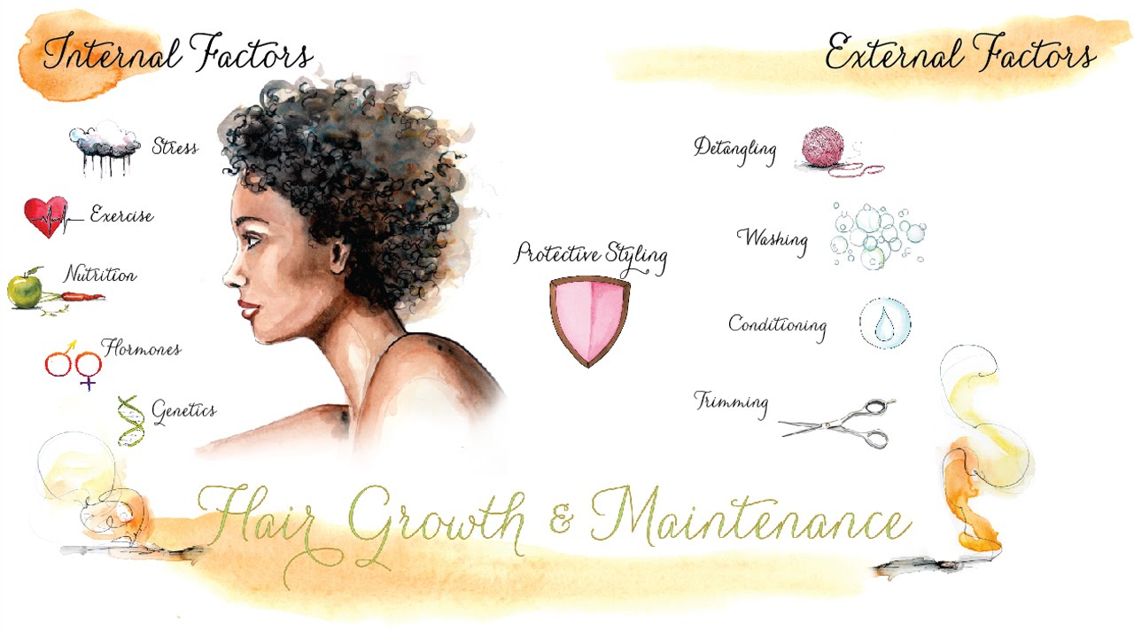 Intro to Hair Growth and Maintenance Chart - YouTube