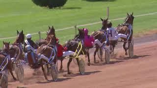 Vidéo de la course PMU PRIX DE L'HIPPODROME DE MONTIGNAC