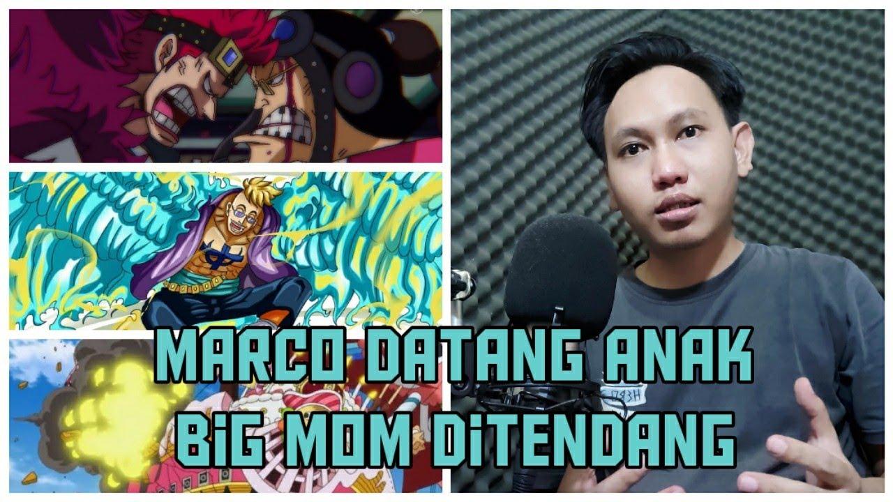 One Piece 981 | Marco, Neko, Izo Datang | Aliansi Luffy Semakin Lengkap