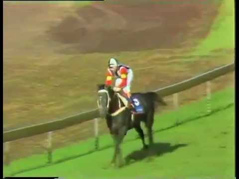 Japan Cup 1989 - Making a Horlicks of the cup