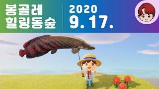 Animal Crossing 힐링동숲  20.09.17…