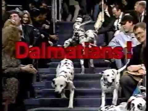 01081993 Letterman Michael McKean & 01101991 Carson Robin Williams