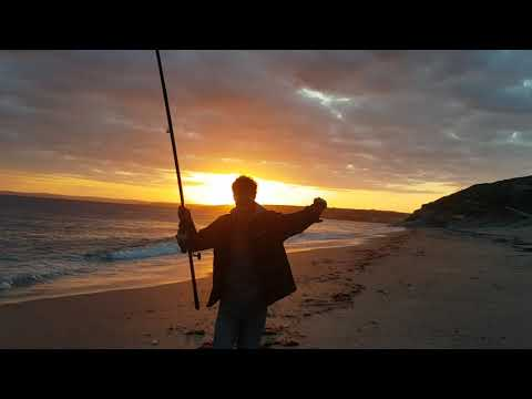 Shark Fishing In Cornwall (Loe Bar Porthleven)