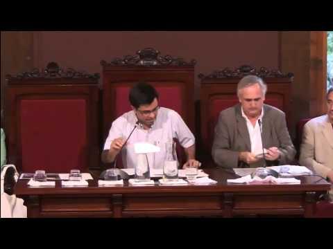 Consell Plenari del districte de Sarria- Sant Gervasi (30 07 2015)