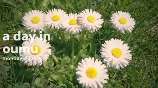 Popular Videos - Oumu