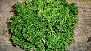 How To Juice Parsley Recipe Thumbnail