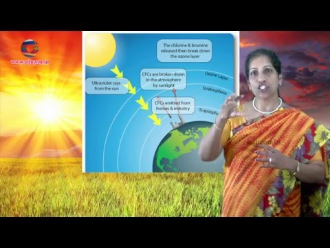 Energy from the Sun || 8th Class Social