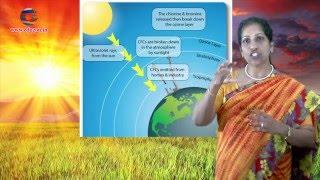 Energy from the Sun || 8th Class Social
