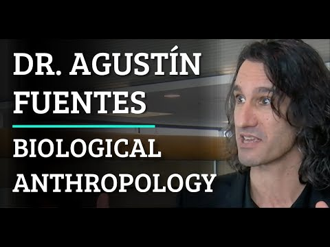 Simulation | AAA #289 Dr. Agustín Fuentes - Biological Anthropology