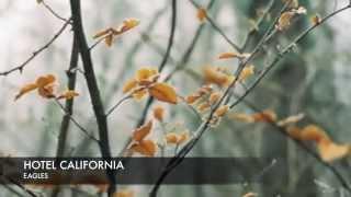 Vietsub Hotel California Eagles