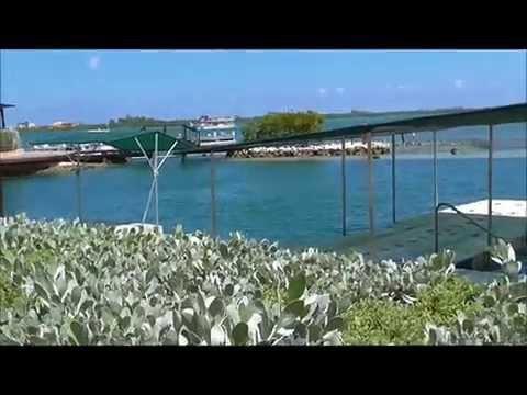 Cruise Video pt 1