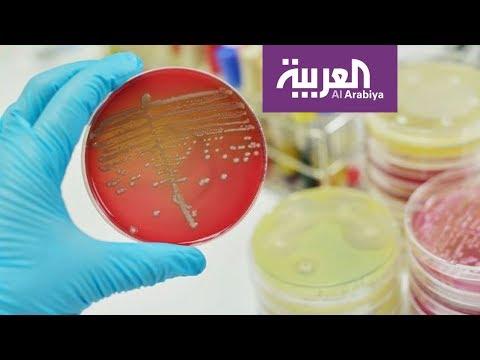 صباح العربية | بكتيريا الأمعاء مسؤولة عن السمنة  - نشر قبل 4 ساعة
