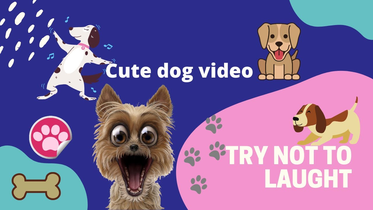 🤣Funniest Dog Videos 2020🤣 🐶 It's time to LAUGH with Dog's life