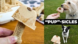 PUPSICLES | Frozen Dog Treat Recipe | The Starving Chef