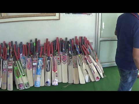How Are Cricket Bats Made From Willow Tree HD Video thumbnail
