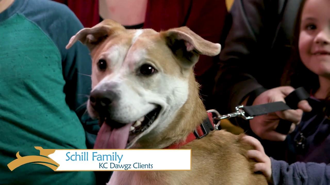 KC Dawgz - Dog Training and Boarding in Overland Park, KS