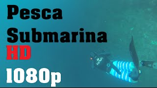 Pesca Submarina Portugal 2015