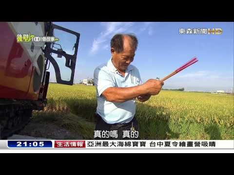 稻田裡的游牧民族-後壁1001個故事