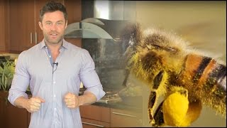 How To Use Bees To Stop Your Hormonal Imbalance - Saturday Strategy