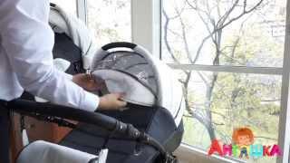 Коляска детская 2 в 1 Alis Indigo