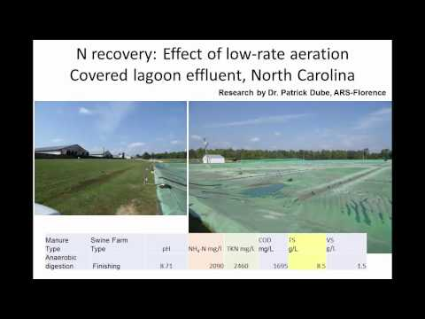 Improved Recovery of Ammonia From Swine Manure Using Gas-Permeable Membrane Technology and Aeration