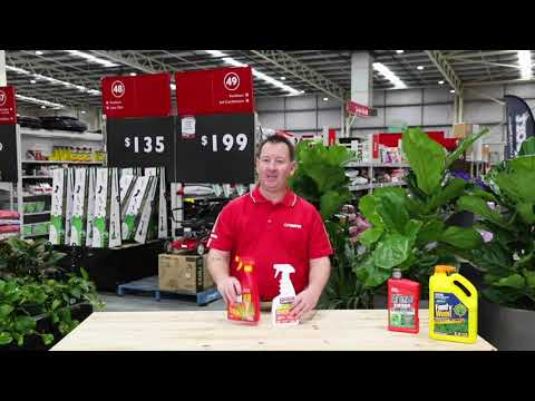 HowTo Select The Right Weed Killer