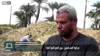 مصر العربية | من أعواد
