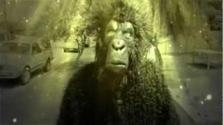 Brenton Manser - Below The Moan MUSIC VIDEO