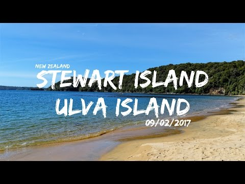 Stewart Island, Ulva Island | Work & Travel NZ | cinematic Vlog | 2017