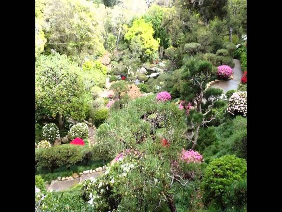 New Garden Design Ideas For Small Gardens   YouTube