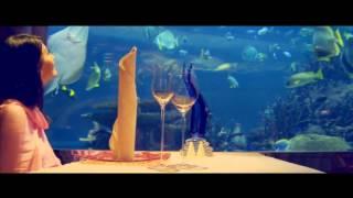 Ассоциация Туризма 247  ОАЭ UAE  Видео про ОАЭ(, 2014-01-01T20:20:18.000Z)