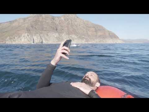 Escape+Explore Cape Town Marine Rib Safari