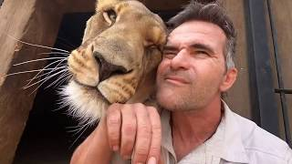 Animal Reunion | The Lion Whisperer