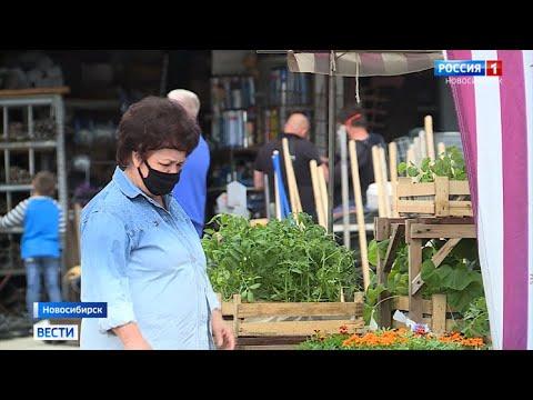 Три городских рынка в Новосибирске возобновили работу после долгого простоя