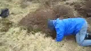 Lambs Rescue, Grassington Moor, Yorkshire Dales