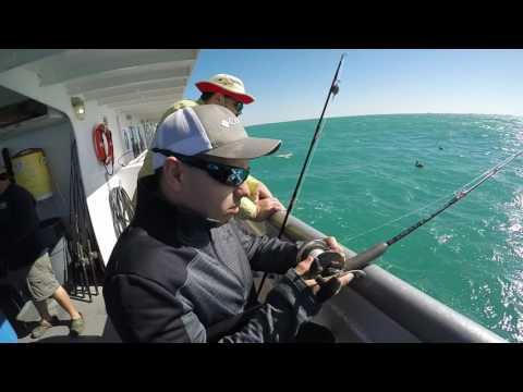 Queen Fleet Fishing 2K
