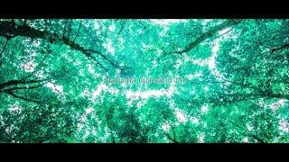 Storia (Kalafina) /ダズビー×スヤ ×らくだる COVER