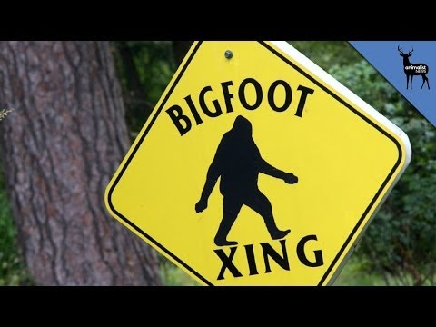 BIGFOOT IS REAL?!