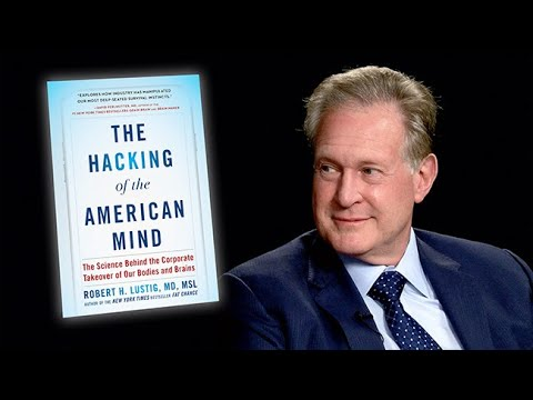 Bilderesultat for hacking of the american mind