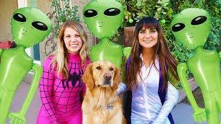 Spider Girl SAVES Sammie From Alien Invasion! Funny Dog