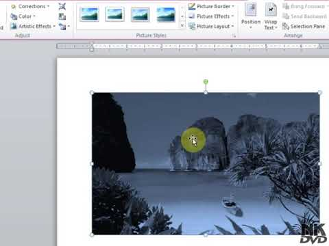 Lesson # 38 Insert Picture & Adjust Microsoft Office Word 2007 2010 TutorialUrdu & Hindi   YouTube