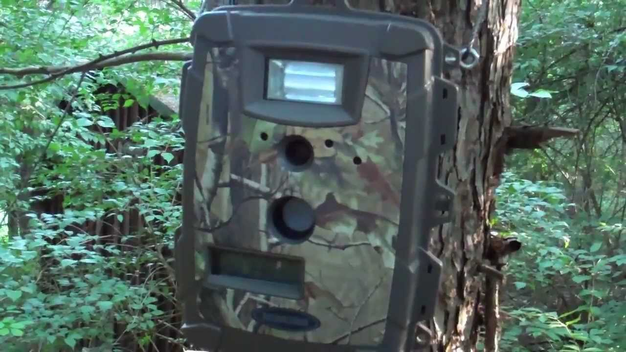 moultrie trail camera setup