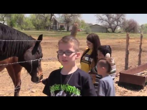 The Colorado Therapy Horses - PDC & Monfort Elementary School