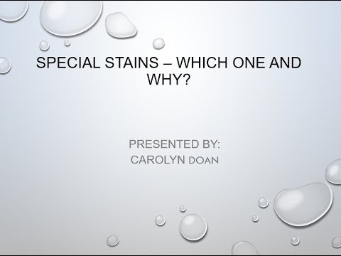 Special Stains – Which One  And Why