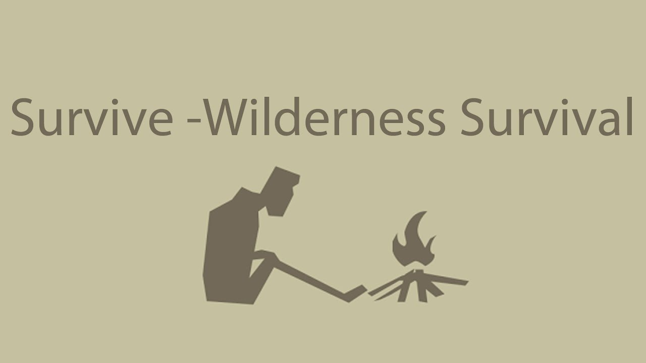 survive wilderness survival gameplay review youtube