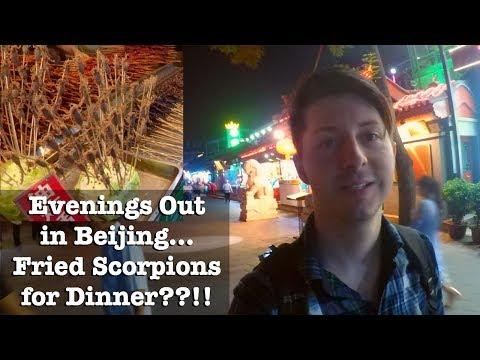 DEEP FRIED SCORPIONS??!! - Touristic vs. Local Evenings - Wangfujing & Houhai - Beijing #7