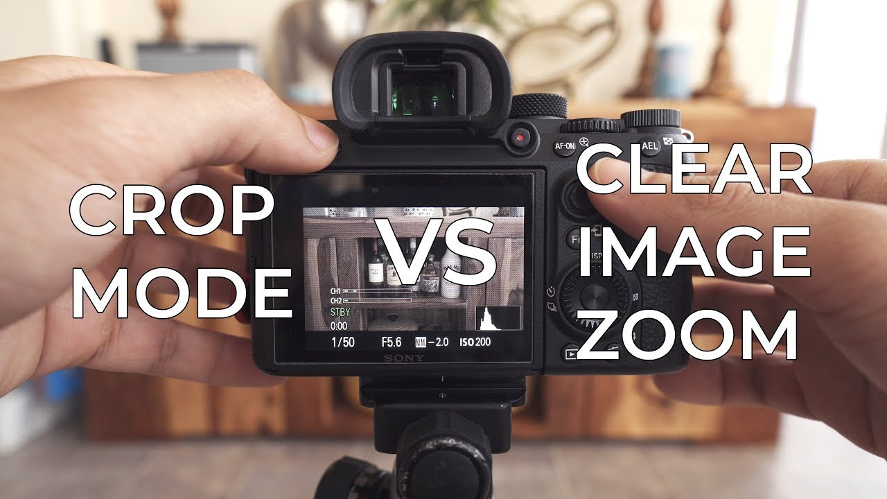 Sony a7iii Crop Mode VS Clear Image Zoom