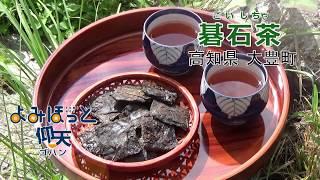 仰天ゴハン 「碁石茶」 高知県大豊町