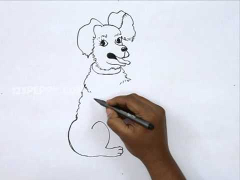 how to draw a dog step by step youtube